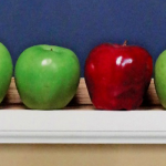 101 Top Picks for Homeschool Curriculum Review