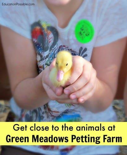 Green Meadows Farm - Education Possible