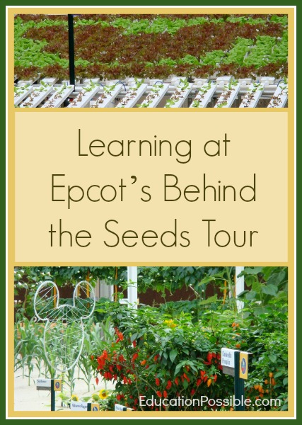 Learning at Epcot's Behind the Seeds Tour