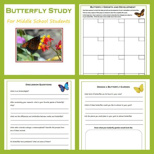 hands-on science butterfly study Education Possible