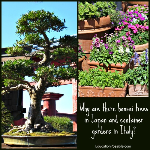 What Older Kids Can Learn at the Epcot Flower & Garden Festival