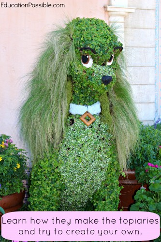 What Older Kids Can Learn at the Epcot Flower & Garden Festival Education Possible