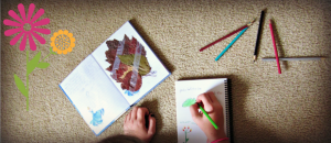 how to start a nature journal Education Possible