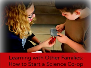 Learning with Other Families: How to Start a Science Co-op Education Possible
