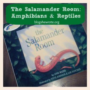 salamander-2-1