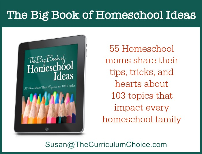 Why I'm Reading The Big Book of Homeschool Ideas