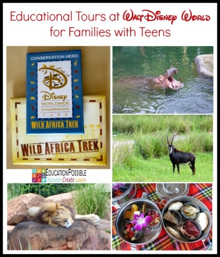 Educational Tours at Walt Disney World for Families with Teens - Education Possible