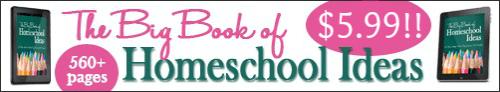 Big-Book-promo-3 5.99