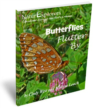 Butterflies-Flutter-By-3D-Cover-2