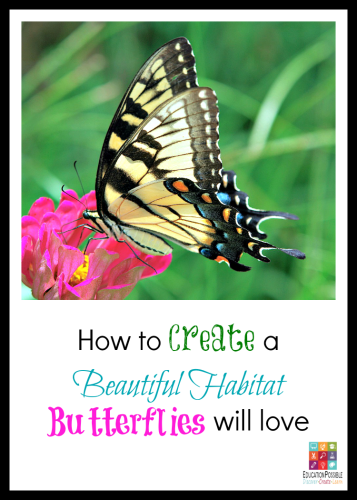 How to Create a Beautiful Habitat Butterflies will Love @Education Possible