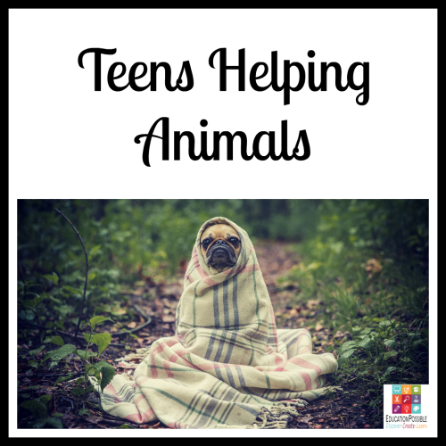 Teens Helping Animals. 5 Ways Teens Can Make a Difference in the World The Christmas season is about giving, which makes it the perfect time to encourage your teen to think of others and give back. To make a meaningful difference. Now that our kids are older, there are more opportunities for them to volunteer and support a cause they believe in. It's our job to help them find a place that will accept them (based on the hours they can be there and their age) that matches their passion.
