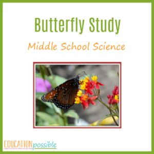 Use this butterfly study printable while you're raising butterflies as a place to record your findings.