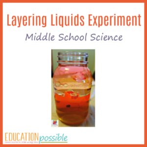 One of the most effective ways to understand and actually see the concept of density is to complete this layering liquids experiment.